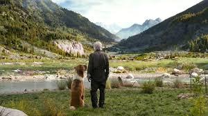 Harrison Ford nel trailer di Il richiamo della foresta, nuovo ...
