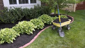 how to mulch your garden 6 kinds of
