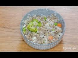 homemade dog food for urinary tract