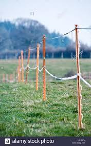 Temporary Electric Fencing Used Around Horse Paddocks Stock Photo Alamy