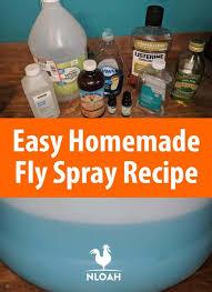 easy homemade fly spray recipe new