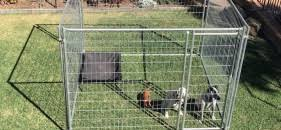 Temporary Fence Hire Brisbane Temporary Fencing Hire A S Temporary Fecning