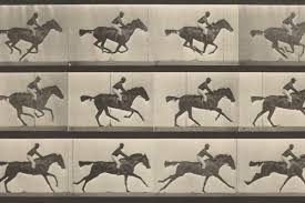 How Eadweard Muybridge Gave Us the Moving Image - Artsy