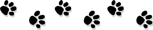 """Image result for jaguar clipart paw waling"""""""