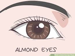 makeup for your eye shape her cus