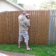 Decor Tips Yellow Bamboo Fencing With Bamboo Roll Fence And Metal Frame Also Landscape Border With Bamboo Fence Bamboo Privacy Fence Bamboo Screening Fence