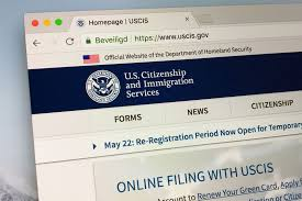 how to check your uscis case status