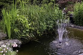 fish pond pumps for garden ponds the