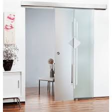 frosted glass barn door with diffes
