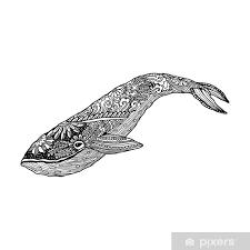 Fotobehang Walvis Vector Zentangle Print Volwassen Kleurplaat