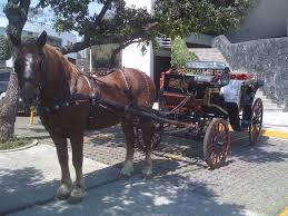 carretas 54431161 carruajes – LIENZO CHARRO DE CONSTITUYENTES