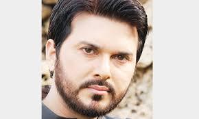 Ali Haider: Hollywood calling? - Newspaper - DAWN.COM
