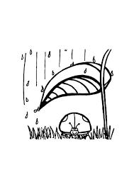 Kleurplaat Lieveheersbeestje Shuilt Voor De Regen Gratis