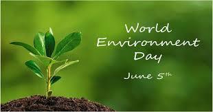 pesan netizen di hari lingkungan hidup yuk ambil bagian