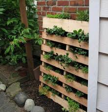 diy herb garden made of pallets 101