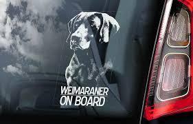 Weimaraner Car Sticker Vorstehhund Dog Window Bumper Sign Decal Gift Pet V01 Ebay