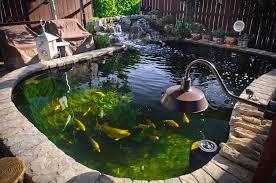 gallon koi pond diy fishpond project