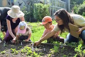 volunteer queens botanical garden
