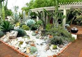cactus garden ideas thanhlonghotel info