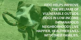 Fido Friends Of Indianapolis Dogs Outside
