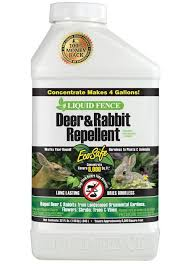 Deer Rabbit Repellent Concentrate On Sale Bulk Pest Control Supplies At Low Price Lifeandhome Com