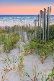America Photograph Sand Dune Fences Cape Cod By Henk Meijer Photography In 2020 Nature Beautiful Nature Pictures