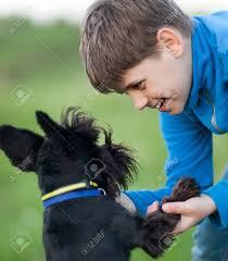 Niño Jugando Con Su Perro Schnauzer Miniatura Al Aire Libre. De ...