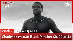 Breaking News : Chadwick Boseman พระเอก Black Panther เสียชีวิตแล้วด้วยวัย  43 ปี ด้วยโรคมะเร็งลำไส้ใหญ่ » SpringNews
