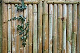 Backyard Fence Ideas Diy Projects Craft Ideas How To S For Home Decor With Videos