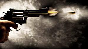 Projeto de Lei que prevê apreensão de arma de agressor é sancionado