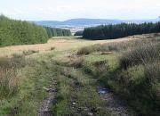 Addie Hill, Moray - area information, map, walks and more