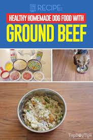 homemade dog food with ground beef recipe