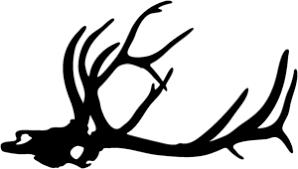 Bull Elk Skull Decal Stod 1 Big Game Window Decals Wildlife Decal