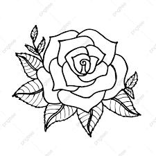جميلة مرسومة باليد أبيض وأسود الزهور عنصر من ناحية رسمها سوداء