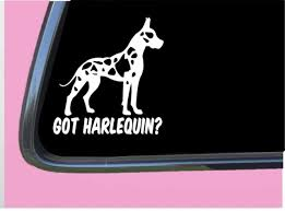 Got Harlequin Great Dane Crop Tp 547 Vinyl 6 Decal Sticker Mastiff Feeder Ebay