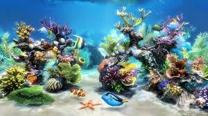 3d fish tank wallpaper 59 images