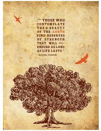 quotes about nature reserves quotes