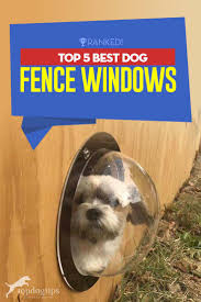 Top 5 Best Dog Fence Windows Top Dog Tips