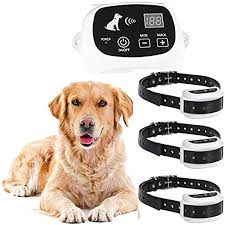 Amazon Com Wireless Dog Fence Electric Pet Containment System Safe Effective Adjustable Control Range Display Distance Suitable For Small Medium Big Dogs With Rechargeable Receiver Collar For1 2 3dogs For Sxdd Pet