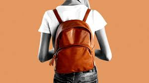 professional women are using backpacks