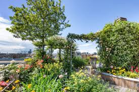 green roofs for sustainable living