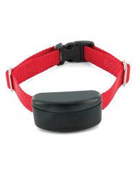 Maxdog Stubborn Dog Fence Collar Dog Receiver Collar