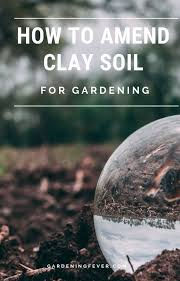 how to amend clay soil for gardening