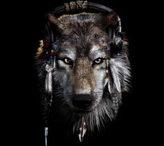 indian and wolf wallpaper images 64
