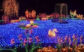botanical gardens home and garden