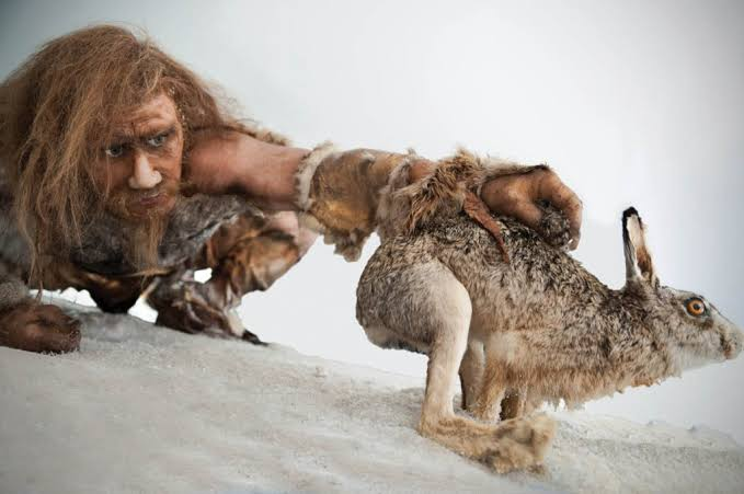 Image result for stone age""