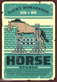 Horse Dressage Arena Free Vector Download It Now