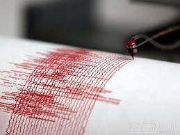 Cutremur-seismograf — Antidotul | Știri Online