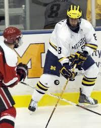 St. Louis Blues send former Michigan hockey player Aaron Palushaj to minors