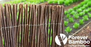 Peeled Reed And Willow Fencing And Panels Forever Bamboo